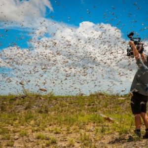 Indulge In The Beauty Of Planet Earth With BBC's Free 40-hour Video- Planet Earth II
